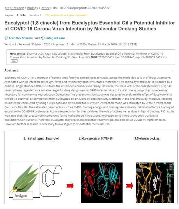eucaliptol et covid